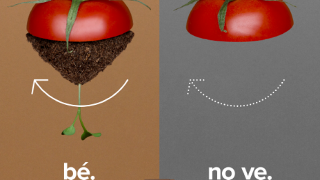 """Si Hi Va, Bé. Si No Hi Va, No Ve"" (""If It Goes There, Okay. If It Does Not Go, It Doesn't Come Back"") New Campaign In Catalonia To Promote Selective Collection Of Organic Waste"
