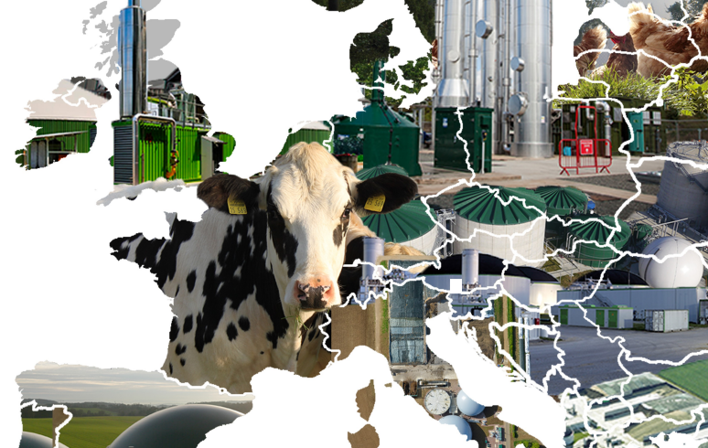 The European Biogas Association Releases Its New Statistical Report